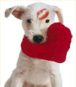 Visit our Rescue Valentine Bulletin Board!